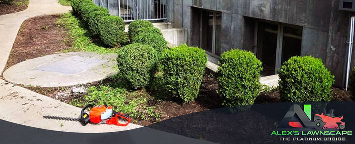 Alex's Lawnscape is a Landscaping Contractor in Charlotte, NC