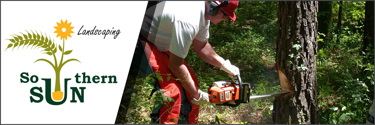 Southern Sun Landscaping, LLC Offers 24-Hour Tree Removal in Roanoke, VA