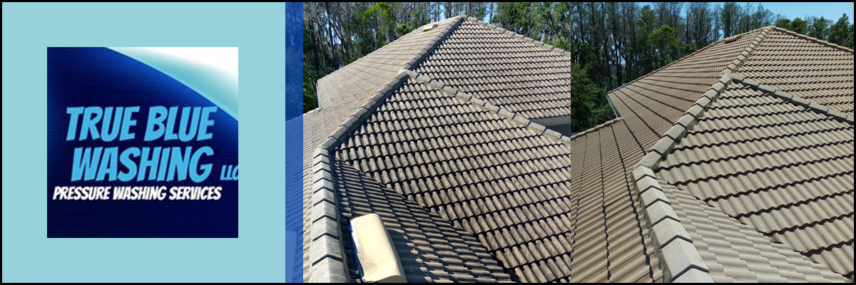 True Blue Washing LLC Provides Roof Cleaning in Lutz, FL