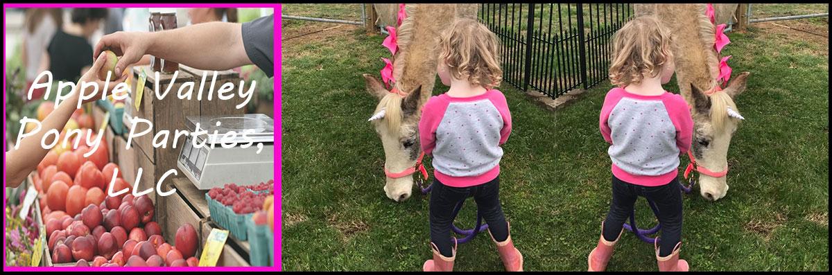 Apple Valley Pony Parties, LLC  Does Pony Parties in Jonesborough, TN