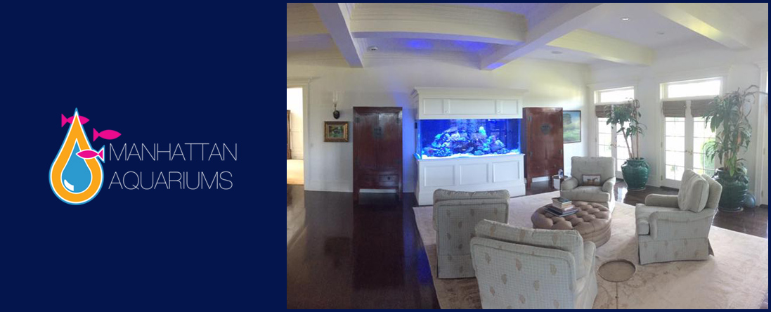 Aquarium Design and Custom Aquariums