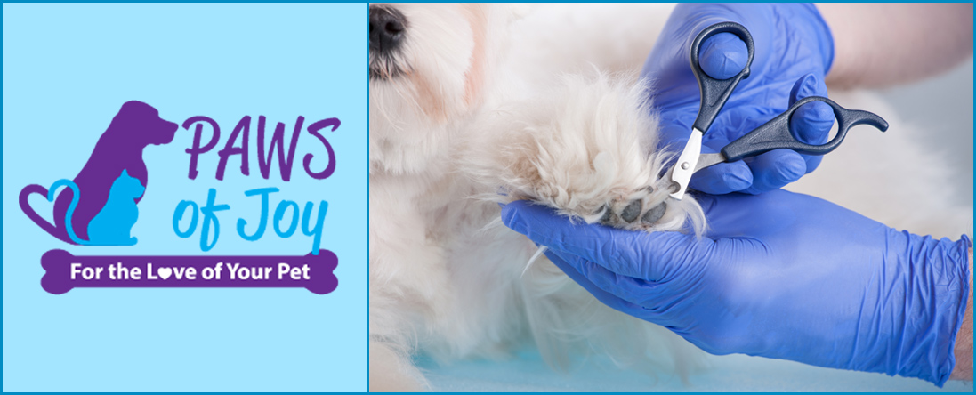 Paws of Joy Offers Dog Nail Trimming & Cat Claw Trimming in Toronto, ON