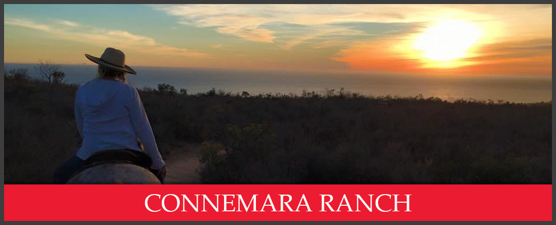 Connemara Ranch Does Equine Coaching in Malibu, CA