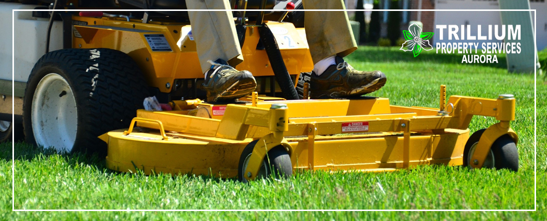 Commercial Lawn Services
