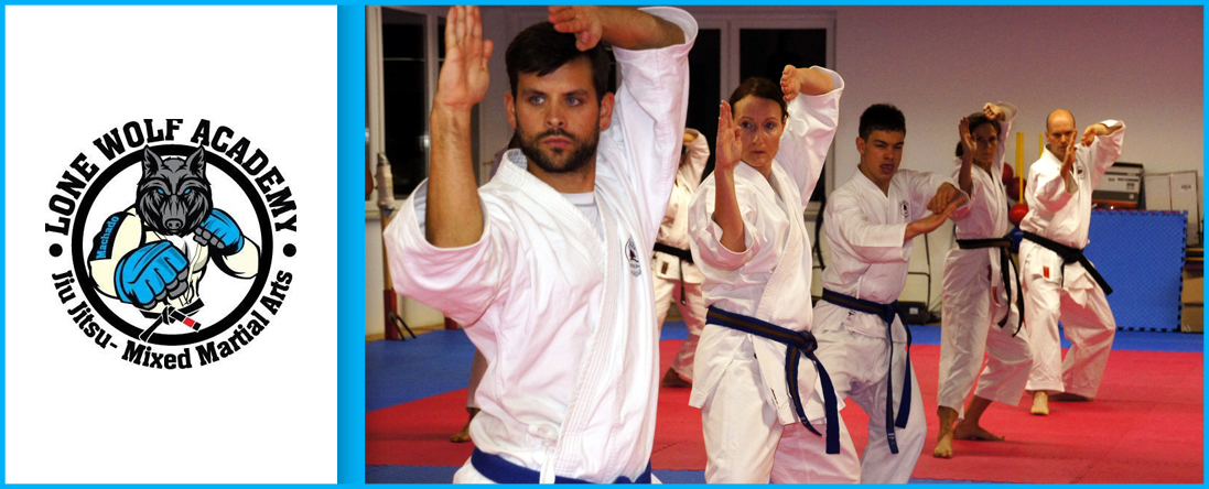Adults Martial Arts