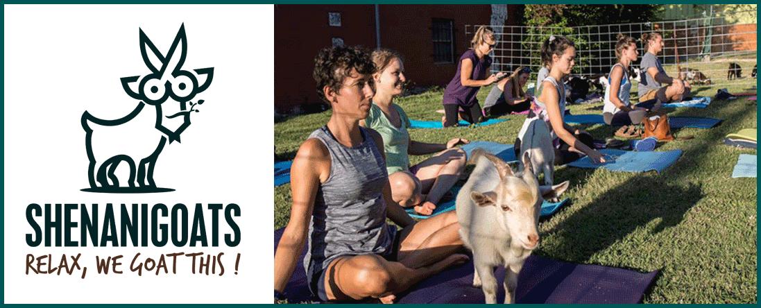 Shenanigoats Yoga Offers Yoga Events in Nashville, TN