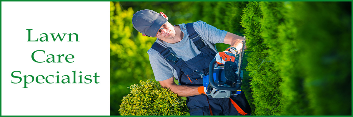 Lawn Care Specialist Does Tree Services in Troy, NC