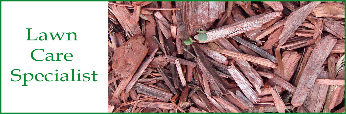 Lawn Care Specialist Does Mulching in Troy, NC