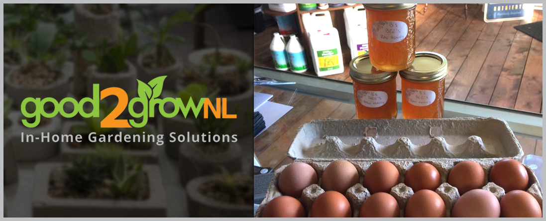 Organic Food & Herbs