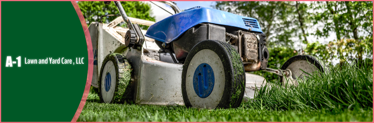 A-1 Lawn And Yard Care Offers Tree Trimming in Hawthorne, FL