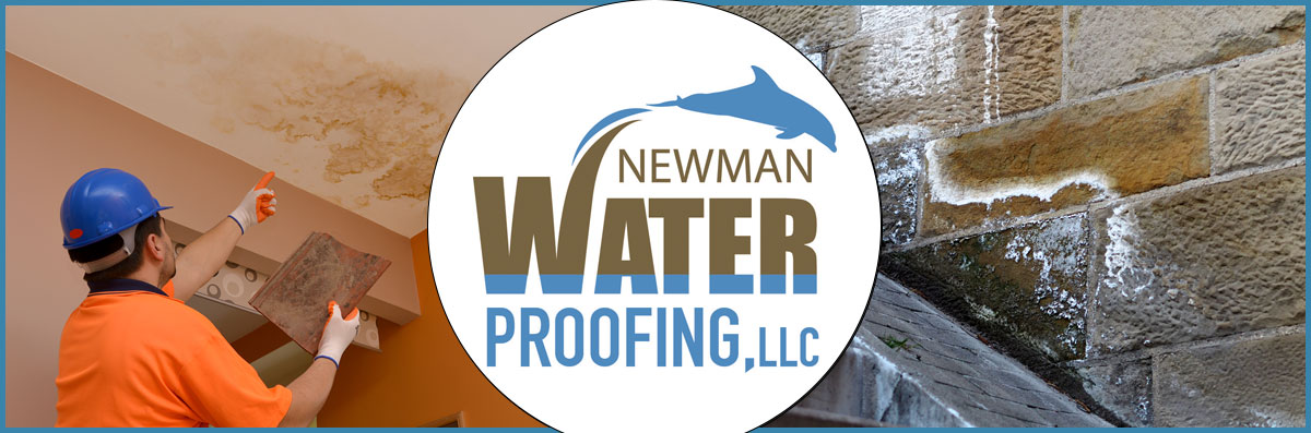 Newman Waterproofing, LLC offers Mold Remediation in Newark, DE