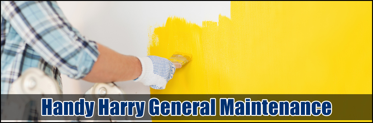 Handy Harry General Maintenance  Does Painting Services in Springfield, IL