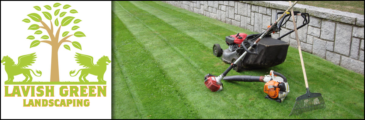 Lavish Green Landscaping Offers Lawn Care in Houston, TX