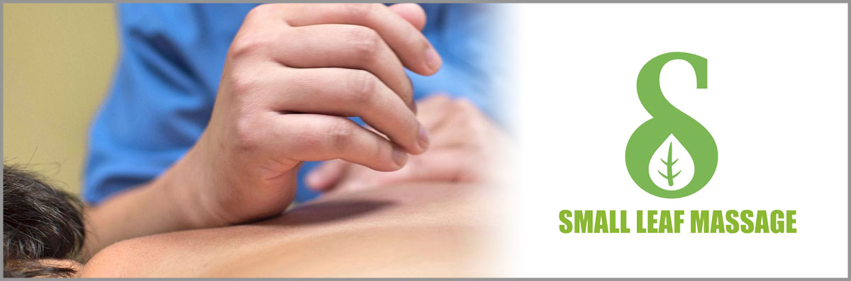 Small Leaf Massage Offers  Swedish Massage in Southfield, MI