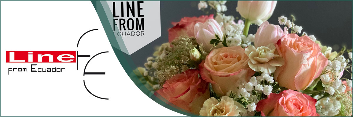 Line From Ecuador Flowers Offers Floral Arrangements in Santa Rosa, CA