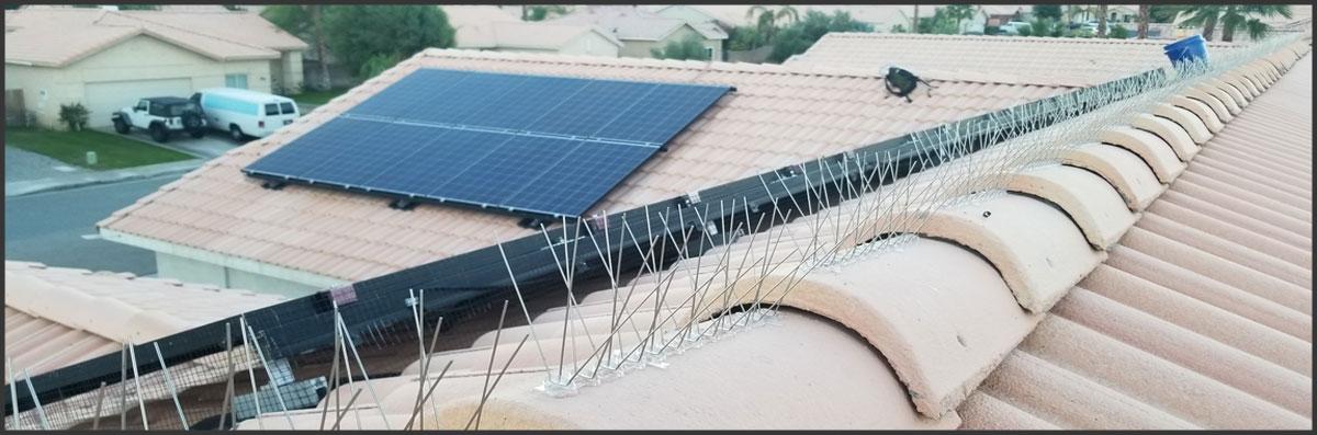 SolarInstinct Maintenance Cleaning Offers Bird Spike and Bird Netting Installation in Palm Desert, CA