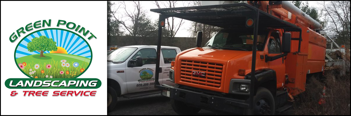 Green Point Landscaping & Tree Service Offers Tree Services in Princeton, NJ
