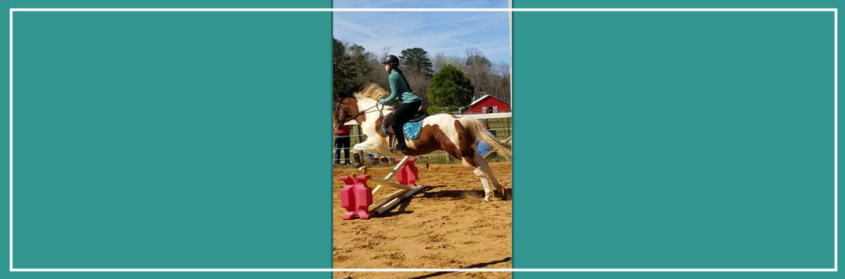 Hand, Hoof and Heart Offers English Riding Lessons in Kennesaw, GA