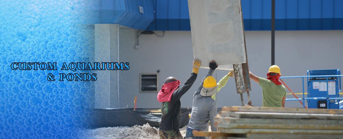 Pond & Aquarium Construction