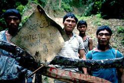 I Penan protestano contro la distruzione della foresta e dei loro stili di vita, Sarawak.