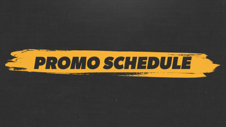 promosched (web square)