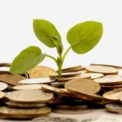 More than 70 percent of individual investors are interested in sustainable investing.
