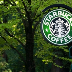 Starbucks has pledged to buy only sustainable palm oil by 2015 and also agreed to become a member of Roundtable for Sustainable Palm Oil.