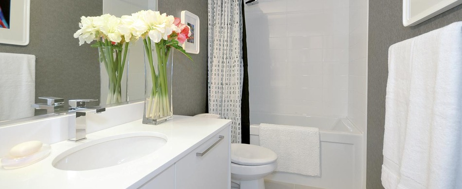 Large_skyway-bg-bathroom