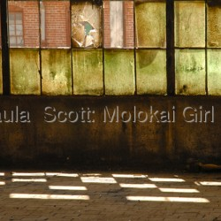 Contemporary art by Paula  Scott: Molokai Girl Studio