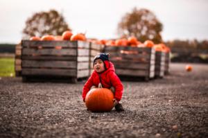 Last Minute Fall Shoot | Assignment Desk Blog
