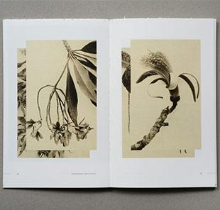 Kim Schoen Artist Book Release Event