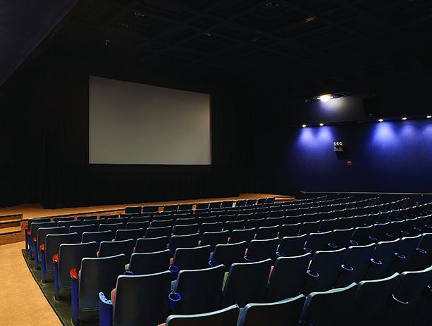 Bam rose cinema