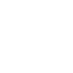 Brooklyn Filmmakers Logo