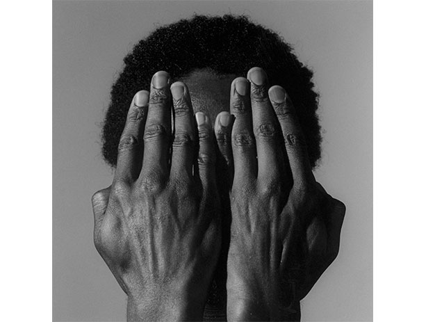 Composing Beauty: Mapplethorpe's Quest for Perfection