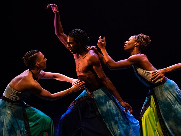 Deeply Rooted Dance Theater