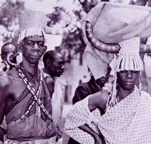 Guinea Docs