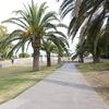 Urbanització del passeig dels cims Fase B i D -Mirador de l'Alcalde a Montjuïc