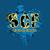 Scf fb profile