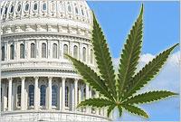 Marijuana STATES Act