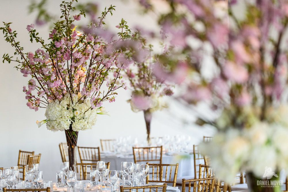 Cherry Blossom High Centerpiece - Jessica & Sean - Maritime Parc - Daniel Moyer Photography