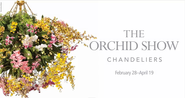floral-chandeliers-nybg