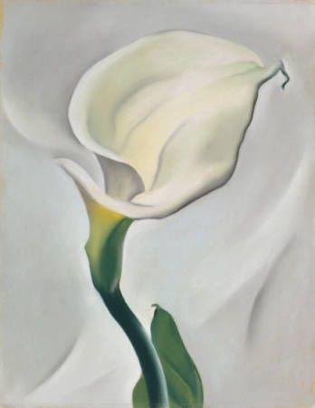 Calla Lily Turned Away - Painting by Georgia O'Keeffe - via Okeeffe Museum.org.