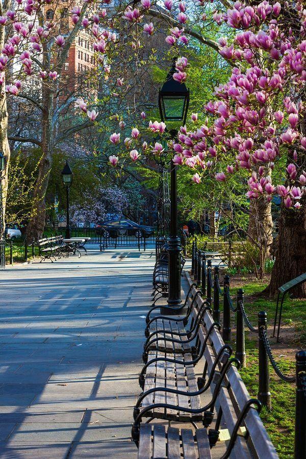 Springtime - NYC - New York City Feels - via Pinterest.com