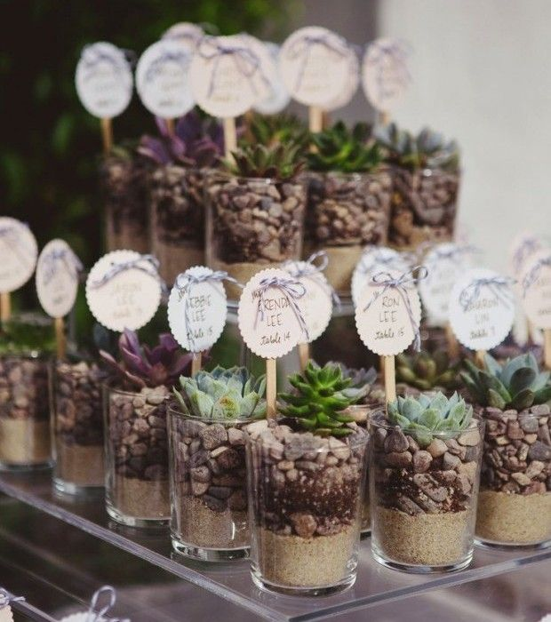 Wedding Favor - Potted Succulents - via itakeyou.co.uk