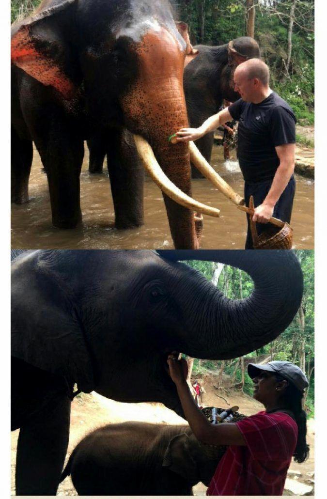 Honeymoon in Thailand - via farandaway.us