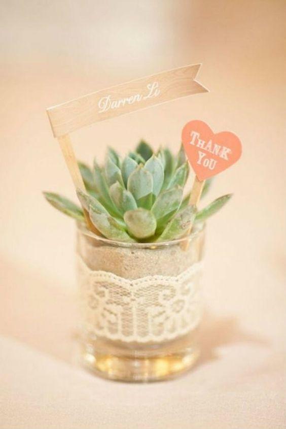 shot glass succulent - via intimateweddings.com