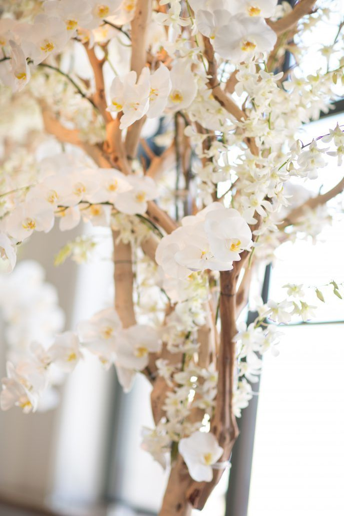 Sophia & Sam Wedding - Ceremony Trees Hydrangea Manzanita Dendrobium Phalaenopsis Orchid - Tribeca 360 NYC - by Shira Weinberger