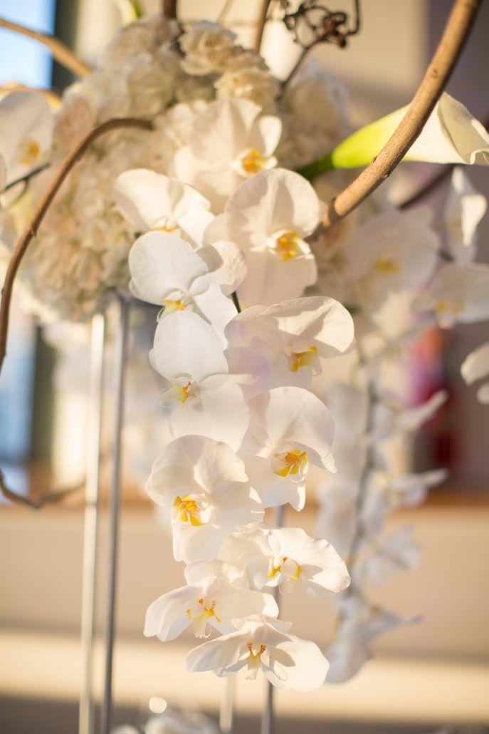 Sophia & Sam Wedding - High Centerpiece Detail Calla Lily Hydrangea Kiwi Vine Phalaenopsis Orchid Garden Spray Rose Wisteria - Tribeca 360 NYC - by Shira Weinberger