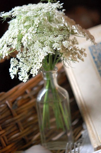 queen anne's lace wedding flowers - via pinterest.com