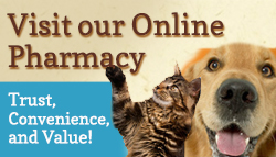 Chemung Valley Veterinary Clinic, 2046 Lake Rd Elmira, NY 14903